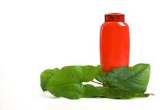 бутылочный зеленый выходит shampooand Стоковые Фотографии RF