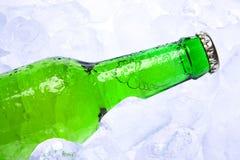 бутылочный зеленый пива Стоковые Изображения RF