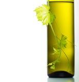 Бутылка вина и зеленая виноградная лоза Стоковые Фотографии RF