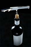 Бутылка вина Стоковая Фотография