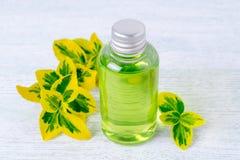 Бутылка естественного геля ливня с заводами Стоковые Фотографии RF