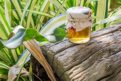Бутылка меда Стоковое Изображение RF