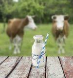 Бутылка молока с striped соломой Стоковые Фотографии RF