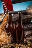 Бутылка домодельных крышек пива и бутылки Стоковое фото RF