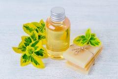 Бутылка органического жидкостного мыла и домодельного травяного бара мыла с заводами Стоковое фото RF