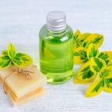 Бутылка органического жидкостного мыла и домодельного травяного бара мыла с заводами Стоковое Изображение RF