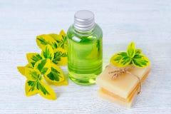 Бутылка органического жидкостного мыла и домодельного травяного бара мыла с заводами Стоковое Изображение