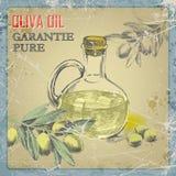 Бутылка оливкового масла и ветви оливкового дерева иллюстрация Стоковое Фото