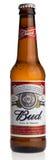 Бутылка пива лагера Budweiser американца Стоковое Изображение RF