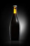 Бутылка пива или сидра изолированных на черной предпосылке Стоковая Фотография