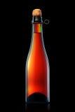 Бутылка пива, сидра или шампанского изолированных на черной предпосылке Стоковое фото RF