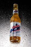 Бутылка пива льда бутона Стоковые Фото