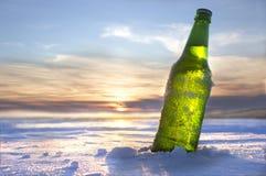 Бутылка холодного пива стоковая фотография