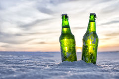 Бутылка холодного пива Стоковые Фото