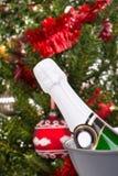 Бутылка шампанского против дерева chritsmas Стоковое Фото