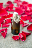 Бутылка эфирного масла и красные розы, вода дух Стоковые Изображения RF