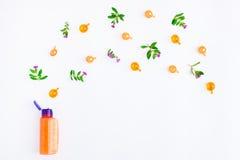 Бутылка эфирного масла с лугом цветет на белой предпосылке Плоское положение, взгляд сверху, естественное Стоковая Фотография