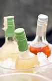 Бутылки безалкогольного напитка в ведре льда. Стоковая Фотография RF