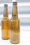 Бутылки Брайна с пивом и зерном Стоковые Фото