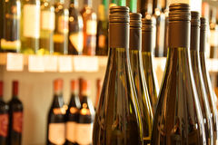 Бутылки вина в магазине вина Стоковое фото RF
