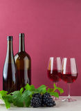Бутылки вина и glassess с виноградинами Стоковая Фотография