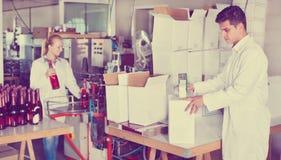 Бутылки вина упаковки работника винодельни Стоковое фото RF