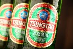 Бутылки дерева пива Tsingtao стоковые фотографии rf