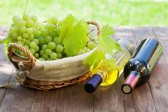 Бутылки и виноградины вина на таблице сада Стоковая Фотография RF