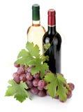 2 бутылки и виноградины вина Стоковое Изображение RF