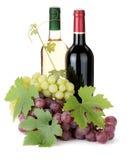 2 бутылки и виноградины вина Стоковое Изображение