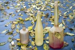 Бутылки и листья осени Стоковые Изображения RF