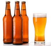 Бутылки и стекло пива Стоковые Фотографии RF