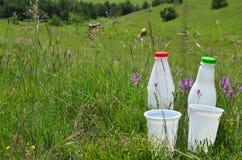 2 бутылки и чашки молока Стоковая Фотография RF