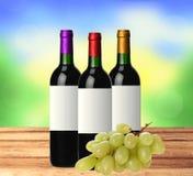 Бутылки красного вина и виноградины на деревянном столе над яркой природой Стоковые Изображения RF