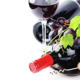 Бутылки красного вина с свежей виноградиной Стоковые Фотографии RF