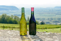 Бутылки красного и белого вина в передних виноградниках Стоковое фото RF