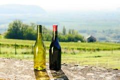 Бутылки красного и белого вина в передних виноградниках Стоковые Фото