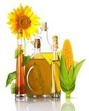 Бутылки, мозоль и солнцецвет масла Стоковая Фотография