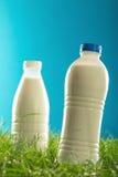 Бутылки молока на траве изолированной на голубой предпосылке Стоковое Изображение RF