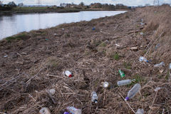 Бутылки на речном береге Стоковые Изображения RF