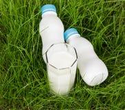 2 бутылки доят и в стекле на траве предпосылки зеленой Стоковая Фотография RF