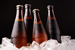 Бутылки пива в кубах льда Стоковые Фотографии RF