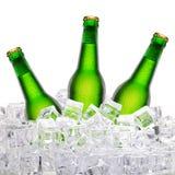 Бутылки пива в льде Стоковые Изображения