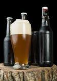 Бутылки пива и кружки пива на пне Стоковое Фото