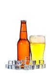 Бутылки пива и стекла получая холодный в кубах льда на белом bac Стоковые Фото