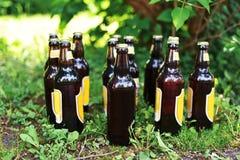 Бутылки пива на траве Стоковые Фотографии RF