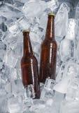 Бутылки пива на льде Стоковые Фото
