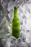 Бутылки пива на льде Стоковая Фотография RF