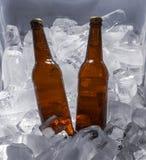 Бутылки пива на льде Стоковое Фото