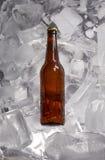 Бутылки пива на льде Стоковые Фотографии RF